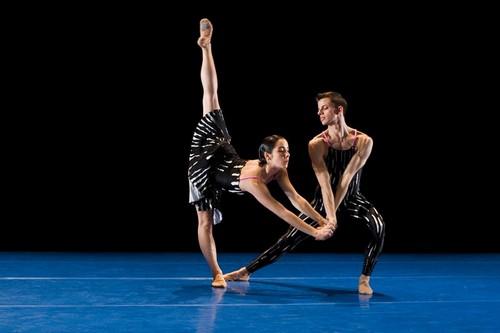 艺术节献现代舞